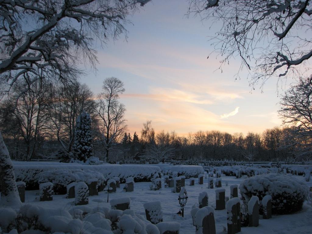 Winter Uppsala