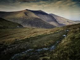 grey ireland