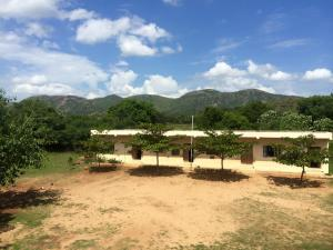 The School at Gandhi-King-Mandela Farm