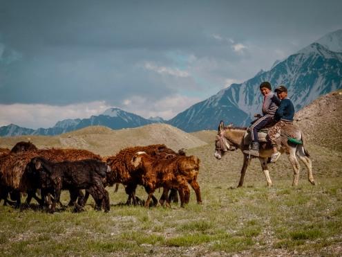 Young Kyrgyz boys