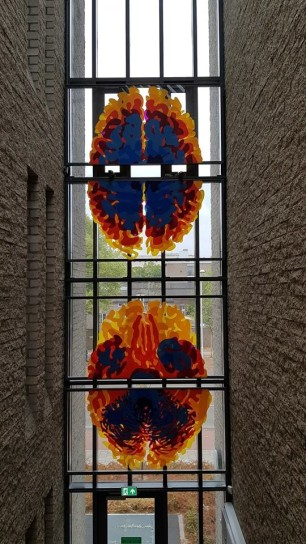Donders Institute for Brain, Cognition and Behaviour – brains on the window!