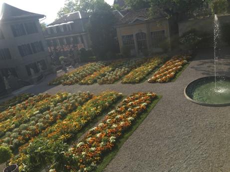 A garden on campus on the University of Zurich!