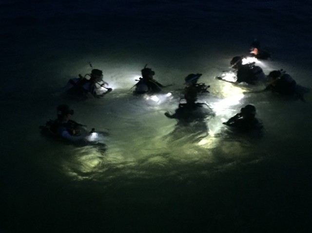 Before conducting any marine researches, we have to obtain certifications for diving first. This photo shows us performing a night dive for our Advanced Open Water certificate. The ocean at night is amazing as we saw bioluminescence, common octopuses, and also a spiny lobster!
