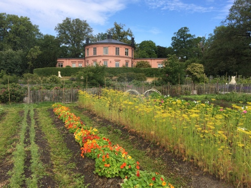 A day off at Rosendals Trädgård (an ecological community farm and garden just outside the city centre) before the conference started