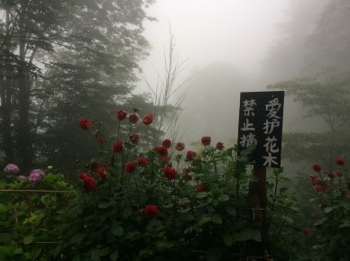 Mount Qingcheng