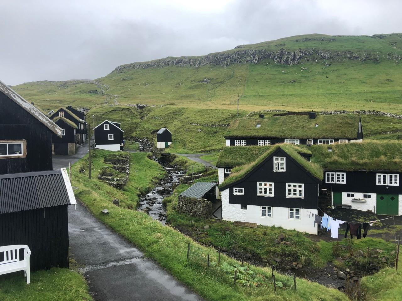 Language Learning in the FaroeIslands
