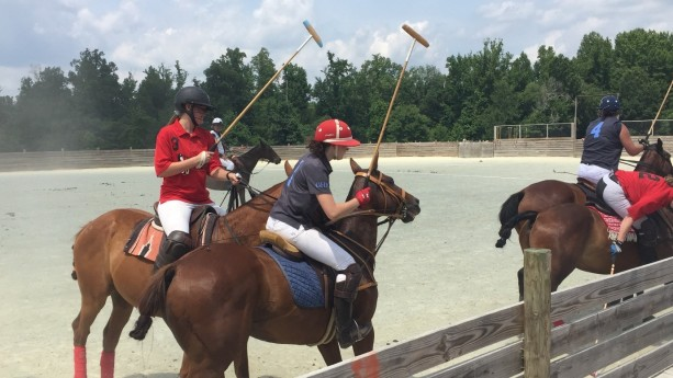 Female polo match, it was really cool but also very warm so I kind of felt bad for the horses sometimes