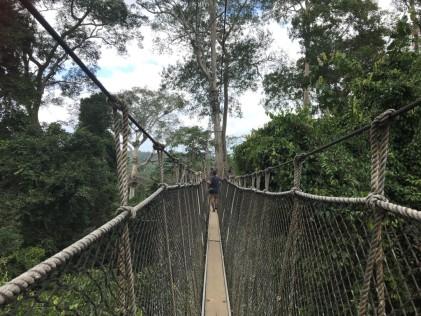 The Canopy Walk in Kakum National Park