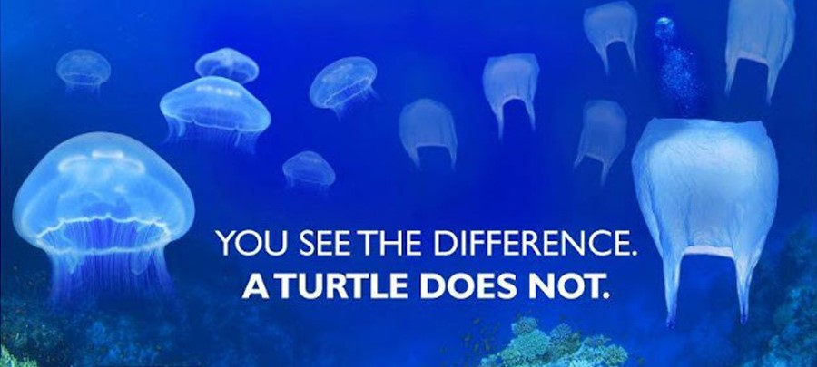 A provocative poster to raise awareness about plastic pollution in the sea