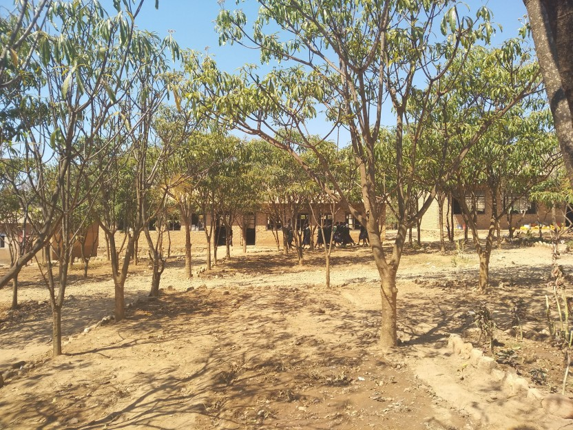 View of one of the secondary schools we taught and planted at