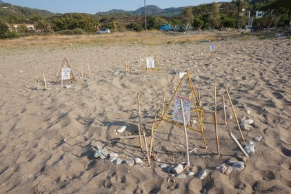 2. The cages (yellow pyramid-like structure made from steel rods) and stones used on Guzelyali Beach