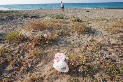 3. A plastic bag and other litter in the foreground and numerous sea turtle nests in the background