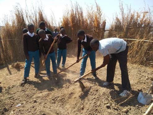 Establishing a tree nursery. First step - ploughing the soil