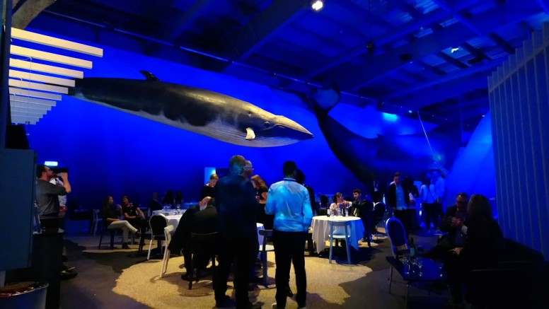 Gala Dinner in the Whale Museum