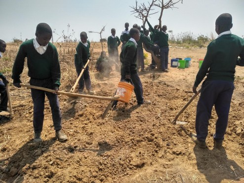 Step two - mixing the soil with manure