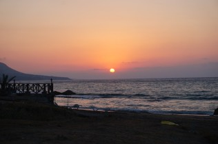7. We were waiting for the sunset to release the hatchlings into the sea as the Sun and other sources of light cause distraction