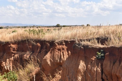 The Arid and dry plains of MPemba, where we volunteered for 2 months