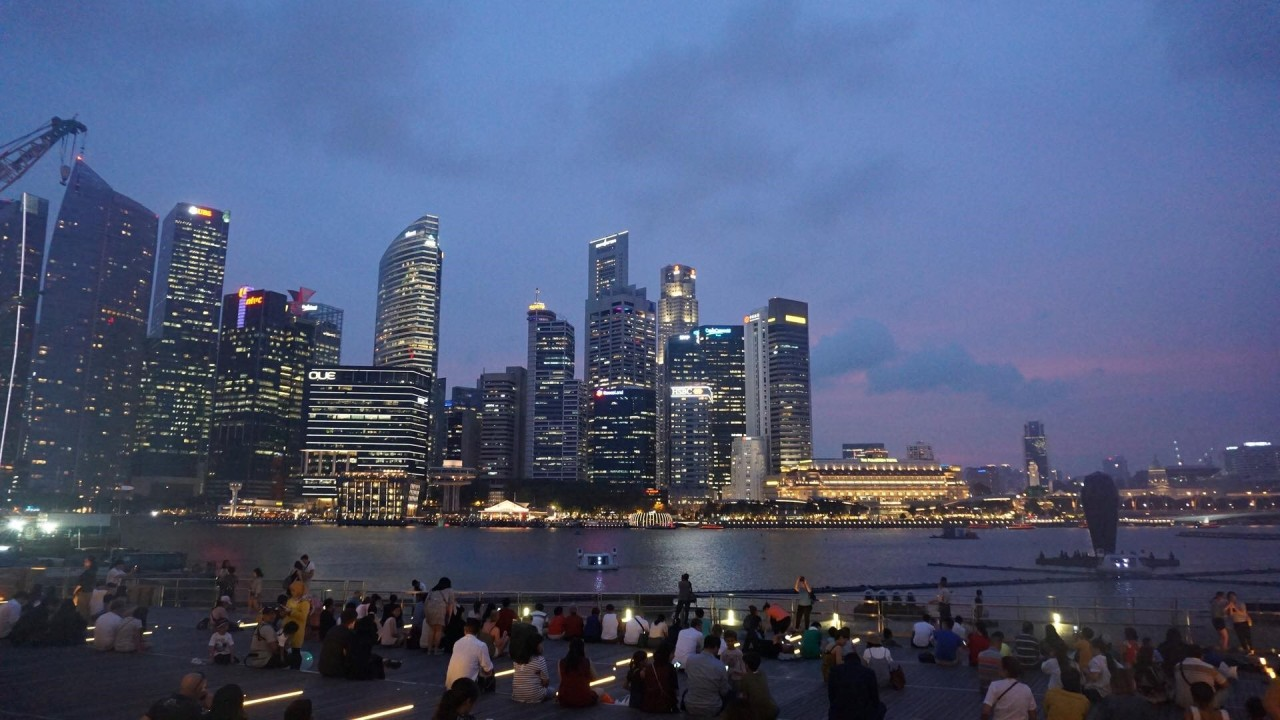 "A ""Crazy-Rich"" Experience: My Attendance to the IFLA World Congress at Singapore"