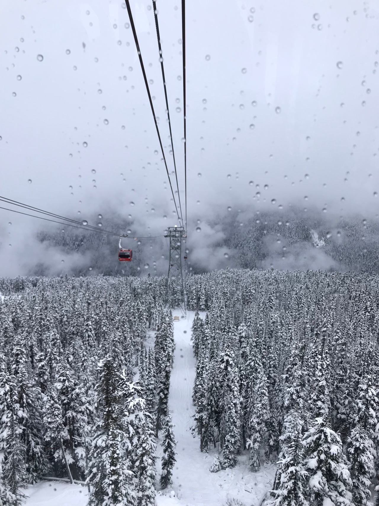 Whistler Opening Weekend – A Year at UBC