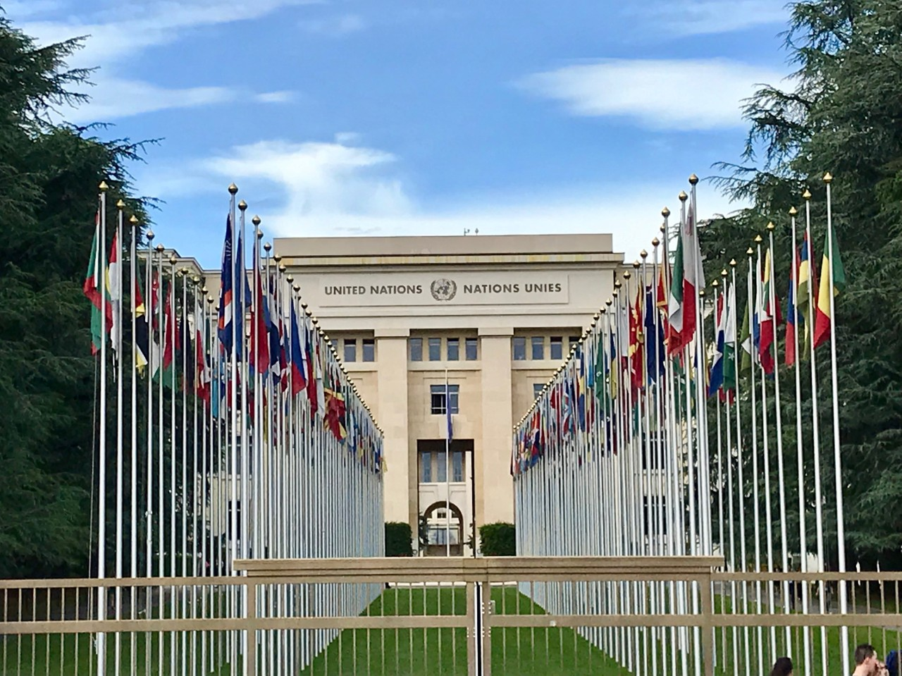 Summer Internship at the World Health Organisation, Geneva, Switzerland