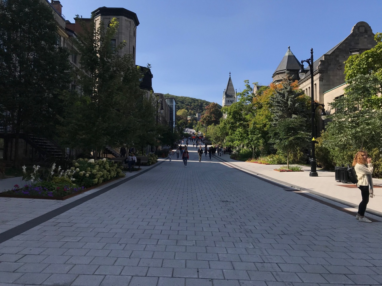 5 different things at McGill,Montreal