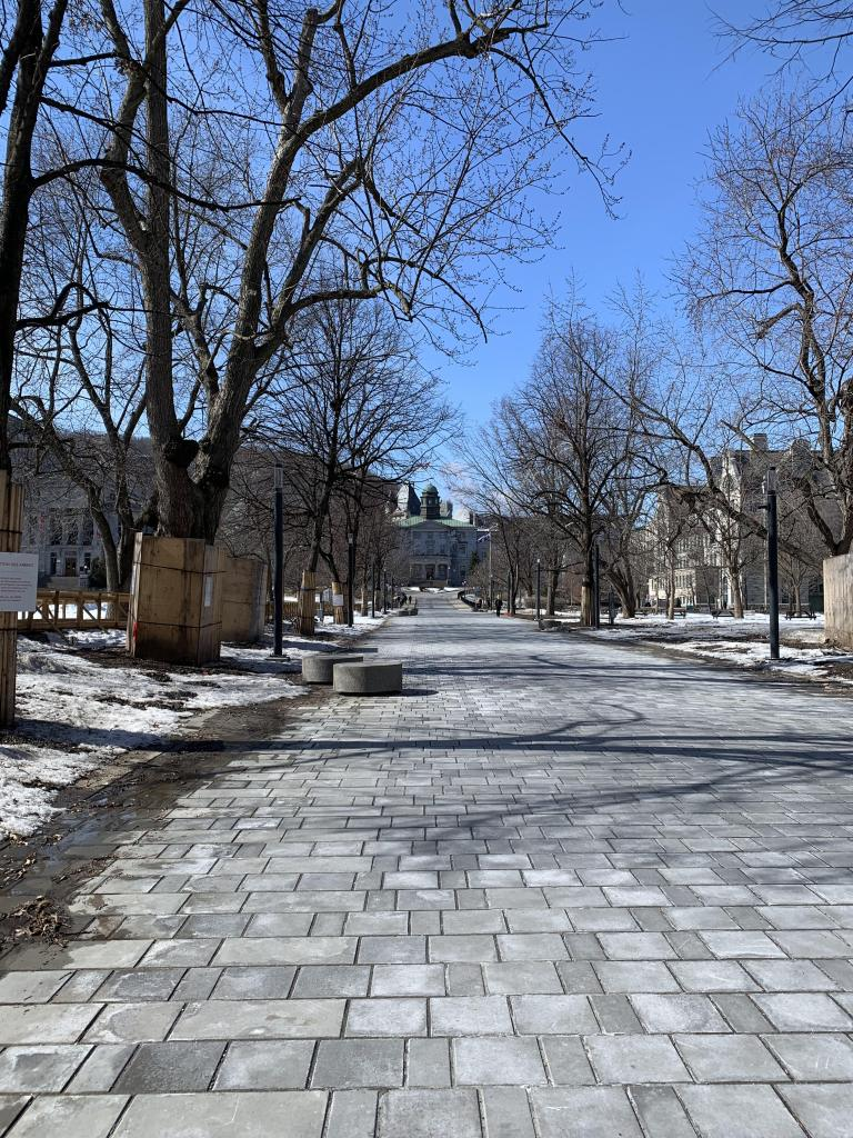 The empty downtown campus